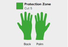Cut 5 Glove Hand Protection Zones