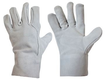 Picture of Short Leather Glove